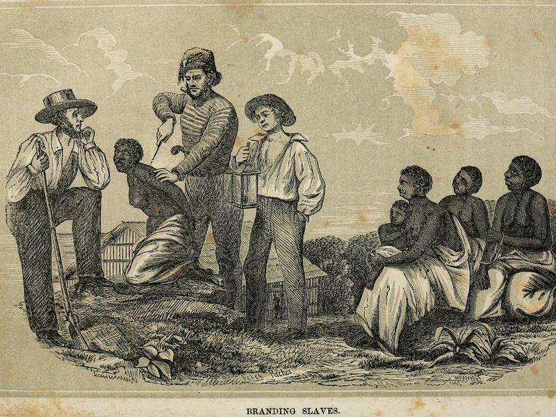dbq american and muslim slavery